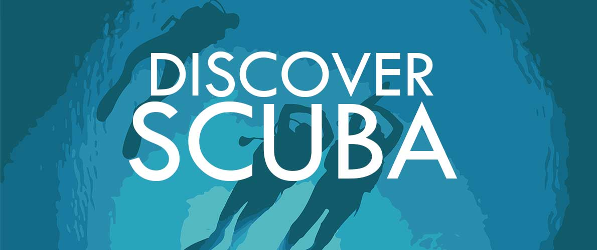 Discover Scuba | Recreational Sports and Services | SIU